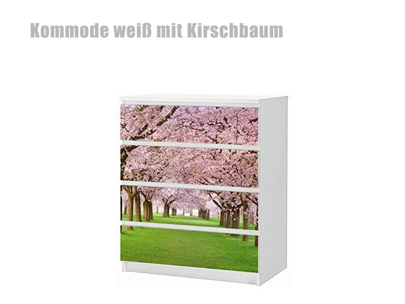 Kommode Kirschbaum Modern 2021